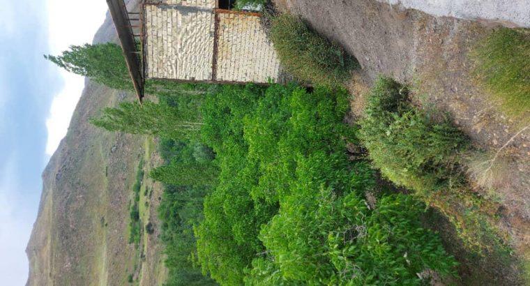 فروش فوری باغ، فیروزکوه