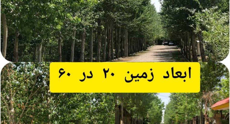 فروش فوری زمین زیر قیمت در کردان